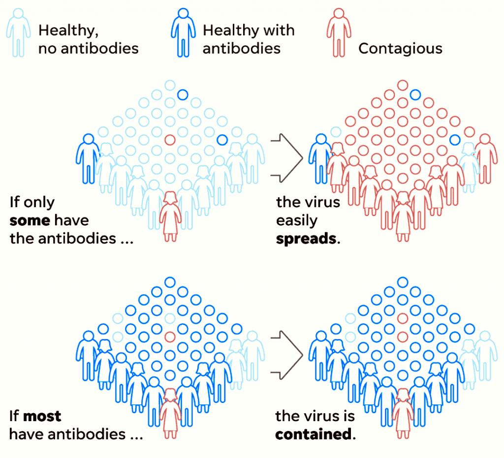 Herd immunity scheme